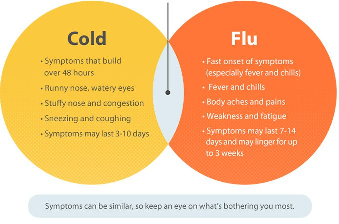 Cold or Flu chart