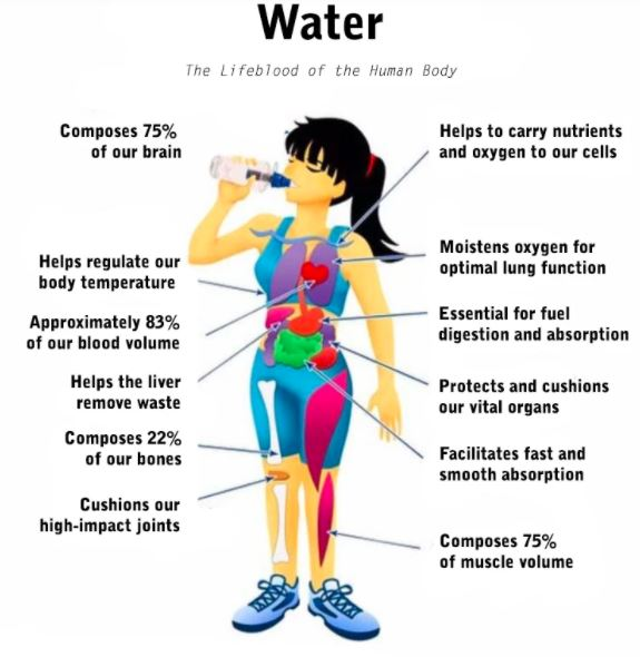 Poster showing benefits of proper hydration